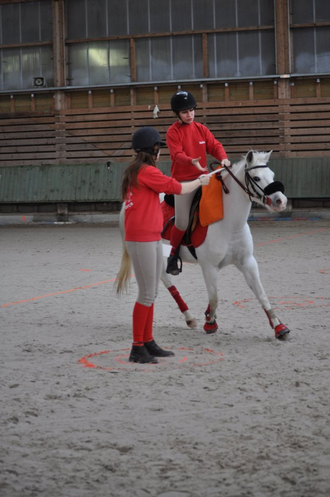 Concours Cernay 28 Avril 2013