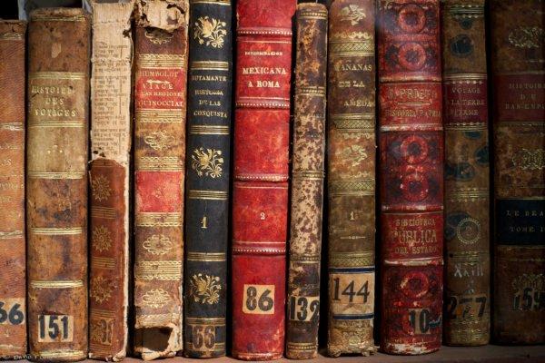 « La lecture, une porte ouverte sur un monde enchanté. » [François Mauriac]
