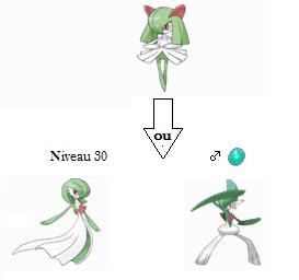 Le sexe des Pokémon