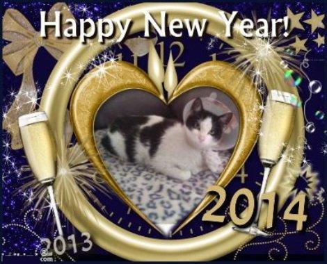 Tous mes bons v½ux pour l'Année 2014
