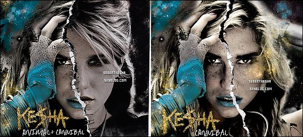 """.  Deux pochettes d'album sont apparues , la premiere pour l'edition deluxe Animal + Cannibal et la deuxieme pour l'album Cannibal . Une preference ?  Puis ,  une chanson provenant de """" Cannibal """" a été publié sur Itunes Austrailian , pochette en dessous , pour l'écouter cliquer ici . Tu aimes ?    ."""