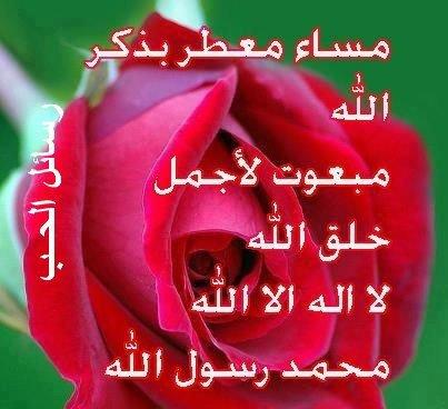 وردة لكل من يشهد ان لااله الا الله وان محمد رسول الله