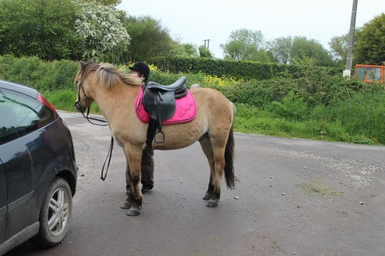 Equitation Topaze ♥