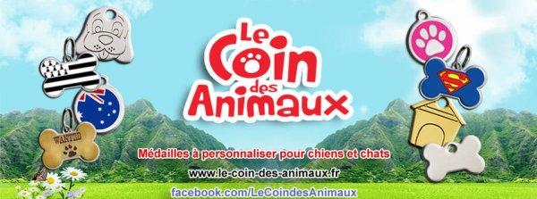 Le Coin Des Animaux.