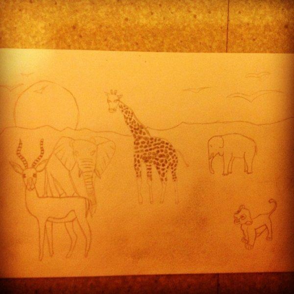 Des dessins un peu rater mais bon ils sont beau quand même :)