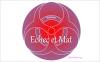 Échec et Mat - Chapitre 2