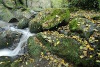 Dossier les lieux de tournage: Les Chutes de Monte Gelato