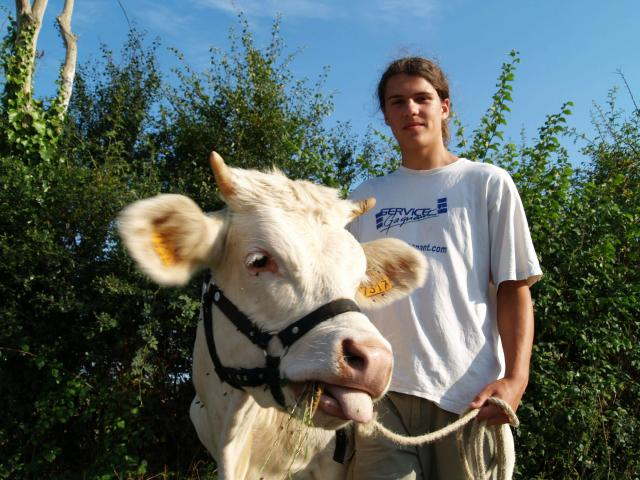 Hadrien et sa vache camomille