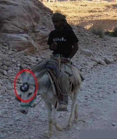 BMW  X anne     4WD