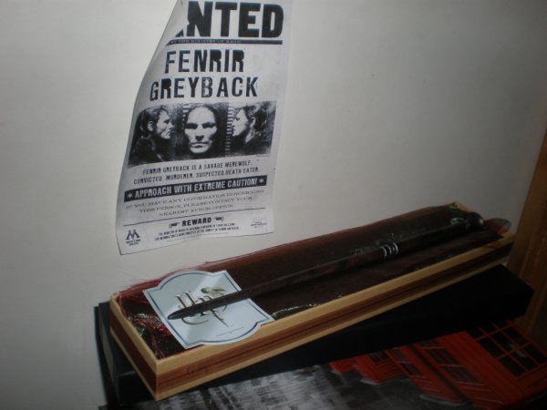 Baguette de Fenrir Greyback en boîte Ollivanders
