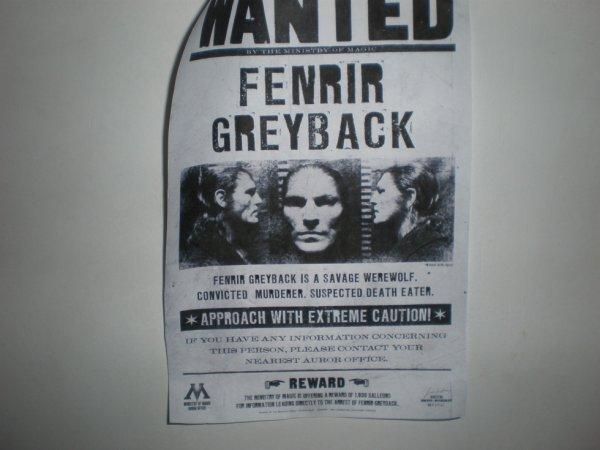 Voici le WANTED de Fenrir Greyback