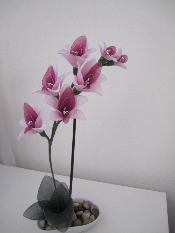 Un orchidé rose .