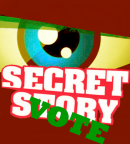 Photo de secret-story3-vote