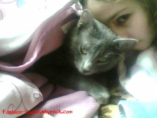 Mon chat Sergeï... <3 !!