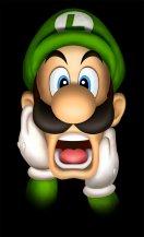 Yeah for me! Luigi!