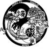 kungfushaolin30