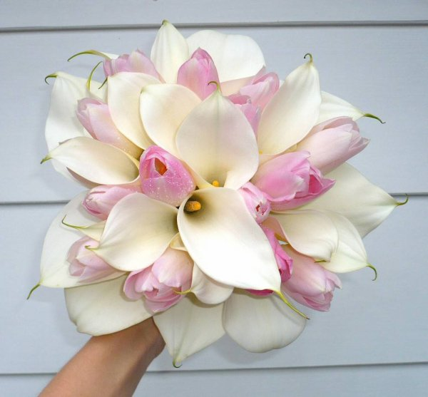 Calla Lilies Bouquet | Calla Lily | Lily Flowers Bouquets | Lily Flowers | Types Of Flowers Pictures |