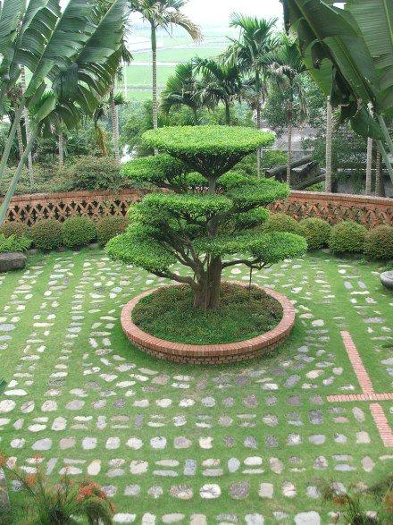 Good Home Gardens