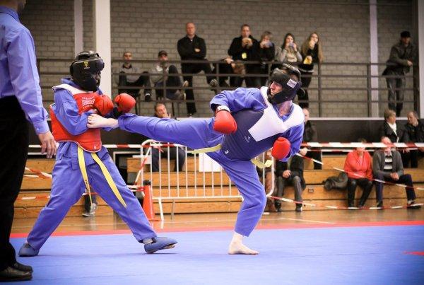 Championnat de Belgique de Viet Vo Dao 2012