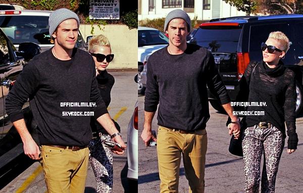 ♥ 25 décembre 2012 ♥ - Toute la famille Cyrus ou presque s'est réunit chez Miley et Liam . Je trouve que Miam forment un très beau couple sur ces photos. pas vous?