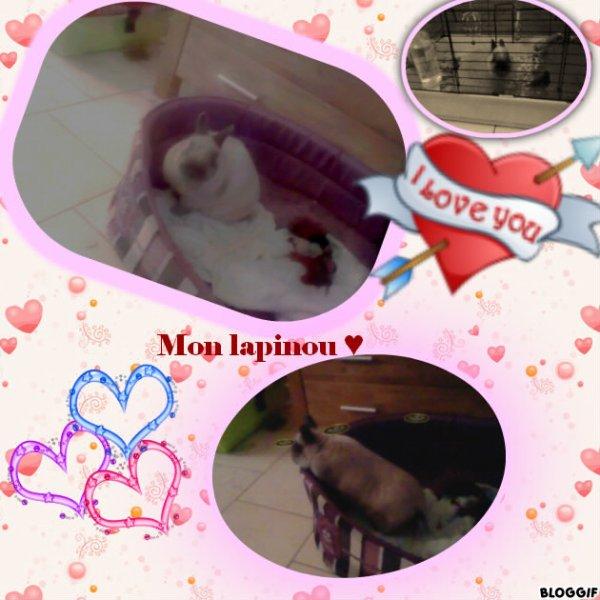 Mes deux amours  ♥
