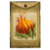 Concours des plantes géantes - 26 janvier 2014