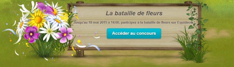 La bataille de fleurs (nouvel événement) - 12 mai 2015