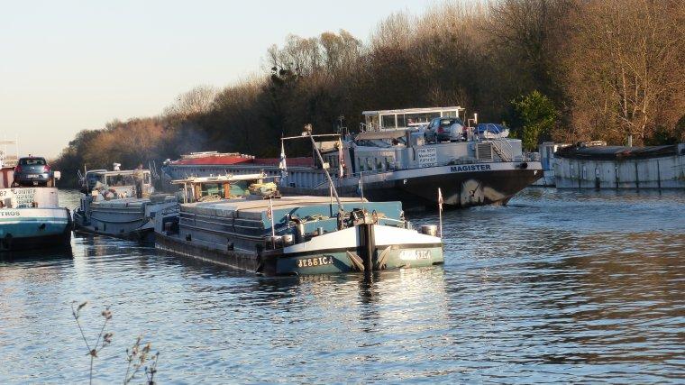 Croisements sur la Seine............MAROLLES SUR SEINE.............NOVEMBRE 2017