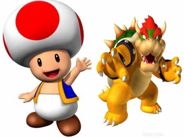 TOAD and BOWSER