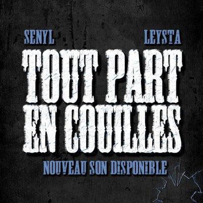 tout part en couilles (leysta ft senyl)  (2010)