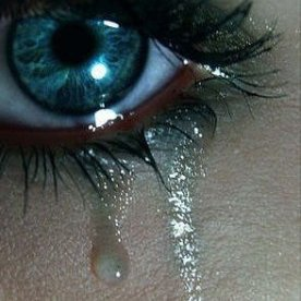 mes petits yeux ne cesse de pleeeeeeeeeeeeurer depuis que je t est revue de joie et de bonheur delphine bisous a toi