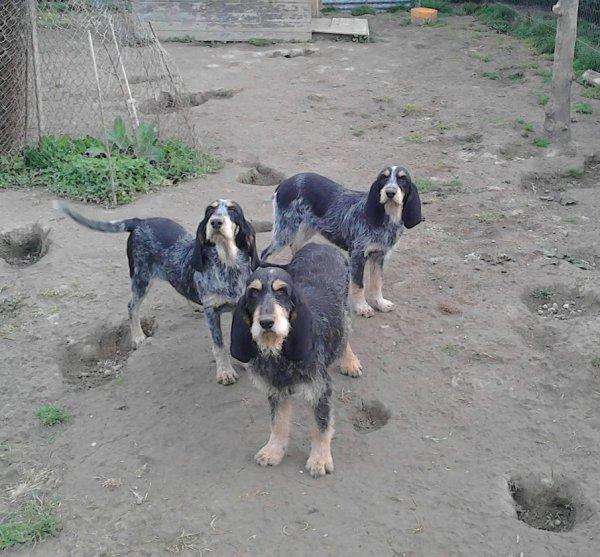 Ezia, Jenna et Jessy