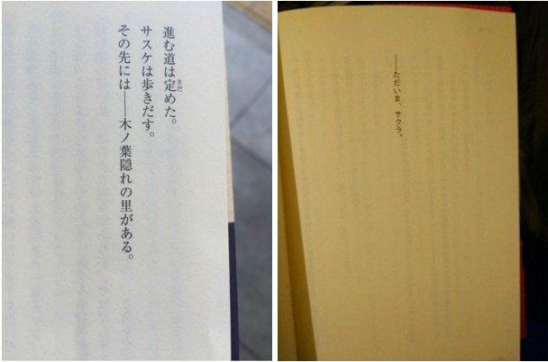 Sasuke Shinden : Book of Next Light - SPOILS !!!!