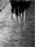 Photo de x3-Aurely-x3