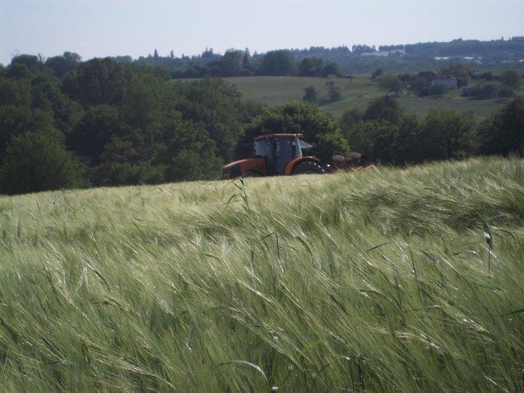 Semis de maïs 2012