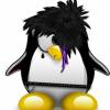 #Pingouin prologue