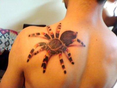 7● (tatouage araignée)