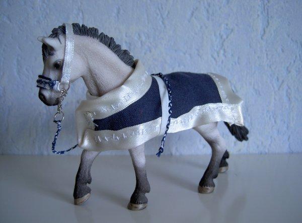 couvertureet licol bleu et blanc