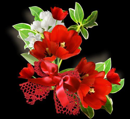 Tres jolies fleurs recu de mon amie sensuel mec