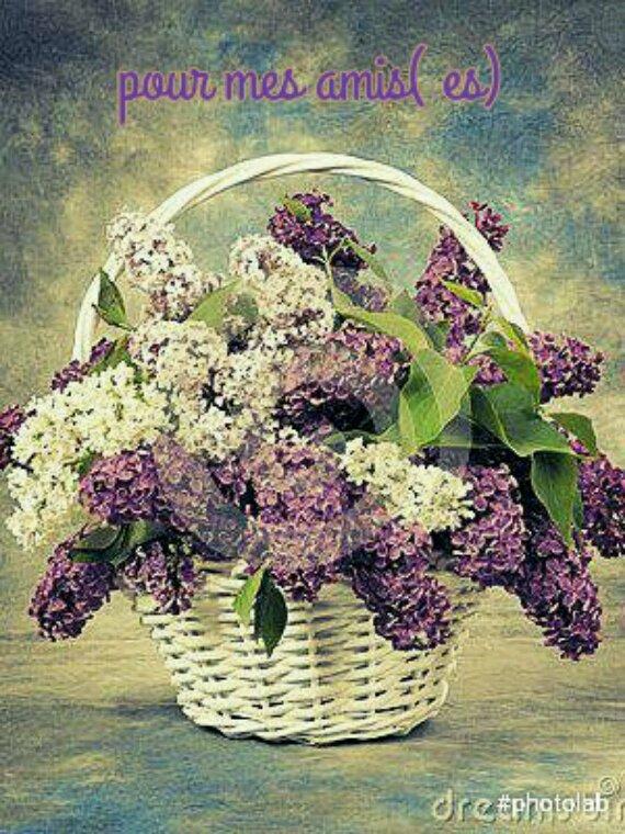 Bon mardi a tous...petit kdo pour tous mes amis( es)