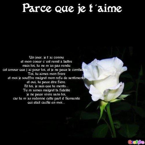 L Poème Des Sentiments De Damon Pour Elena L Fan De Damon