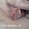 Photo de Mes-bebinouw