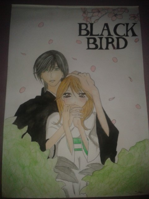 dessin Black Bird