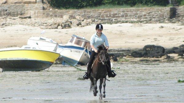 On a tous étaient marqués un jour par une une rencontre avec un poney ou un cheval !
