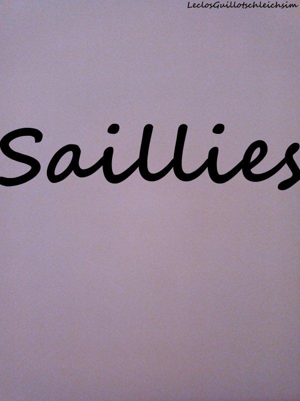 Saillies