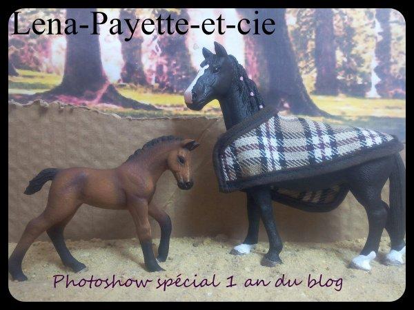 Photoshow spécial 1 an du blog