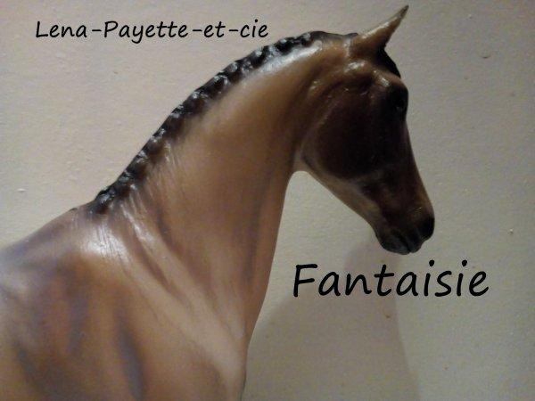 Présentation des chevaux: Fantaisie