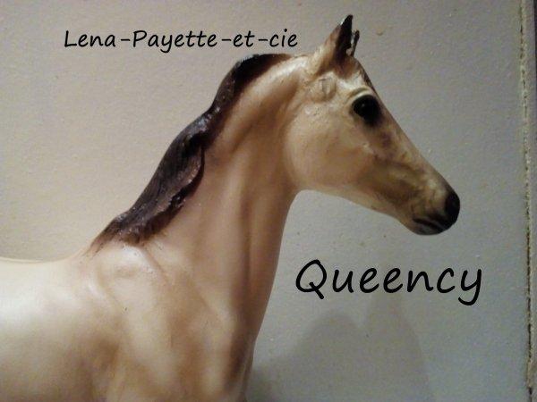 Présentation des chevaux: Queency