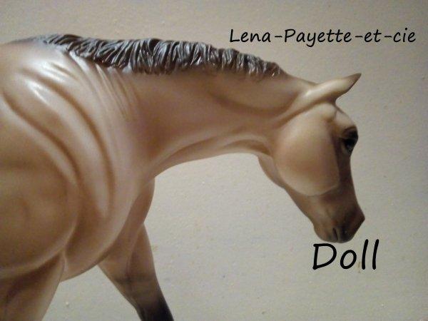 Présentation des chevaux: Doll