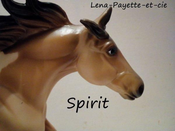Présentation des chevaux: Spirit